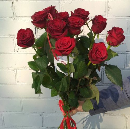 11 красных роз под ленту