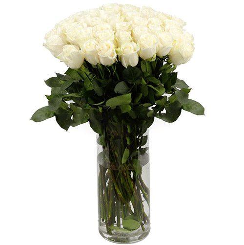 фото Роза импортная белая (поштучно)