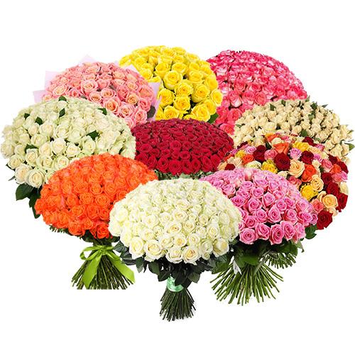 букет 1001 роза разных сортов